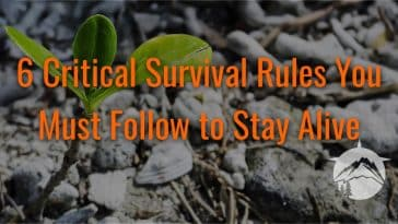 6 Critical Survival Rules You Must Follow to Stay Alive