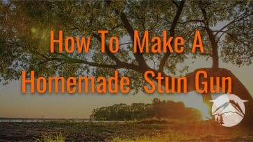 How To Make A Homemade Stun Gun