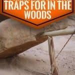 6 primitive survival traps for in the woods