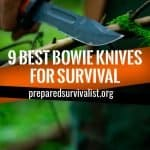 9 Best Bowie Knives For Survival